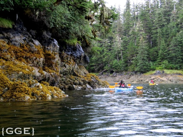 Kayaking Prince William Sound Alaska