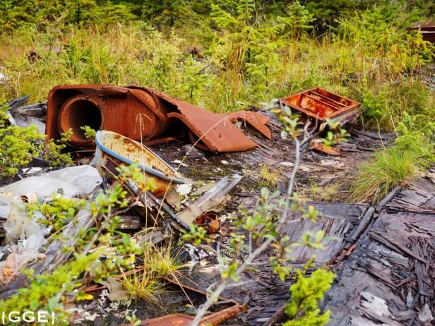 Gold Mining Alaska