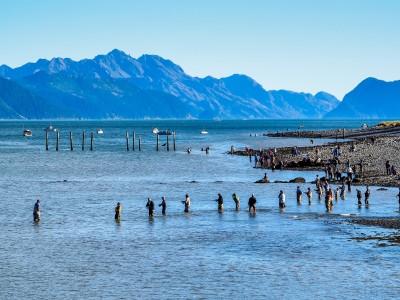 Combat fishing Seward Alaska