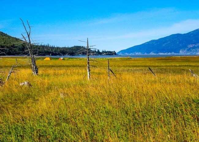 Hope Kenai Peninsula