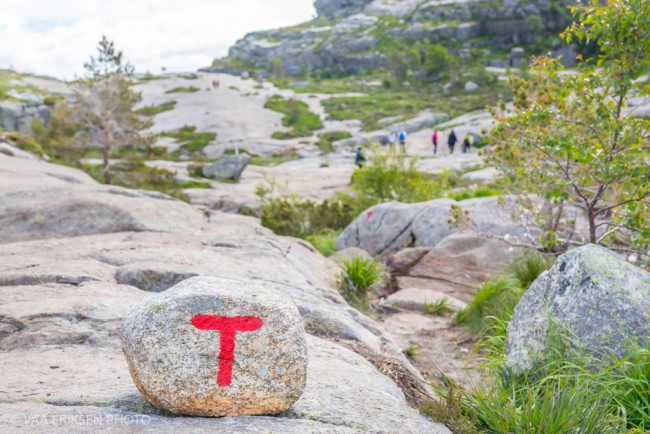 Hiking in Norway T on trails (1 of 1)