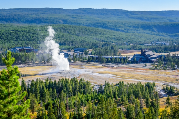 Geyser erupting Yellowstone