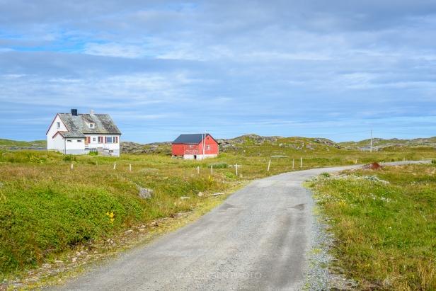 Ingoya Finnmark summer paradise
