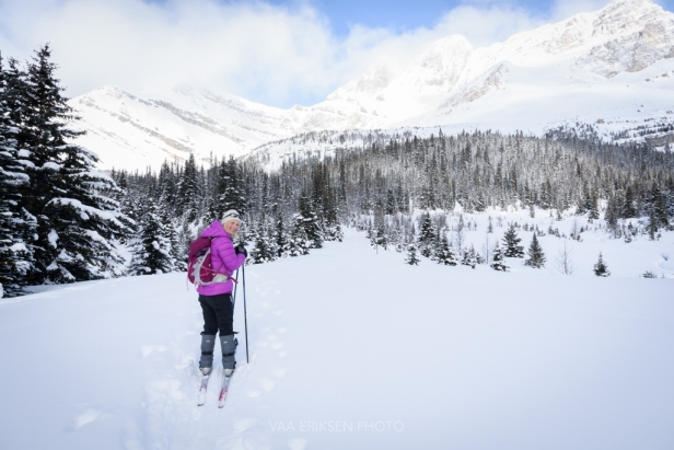 skiing skoki lodge