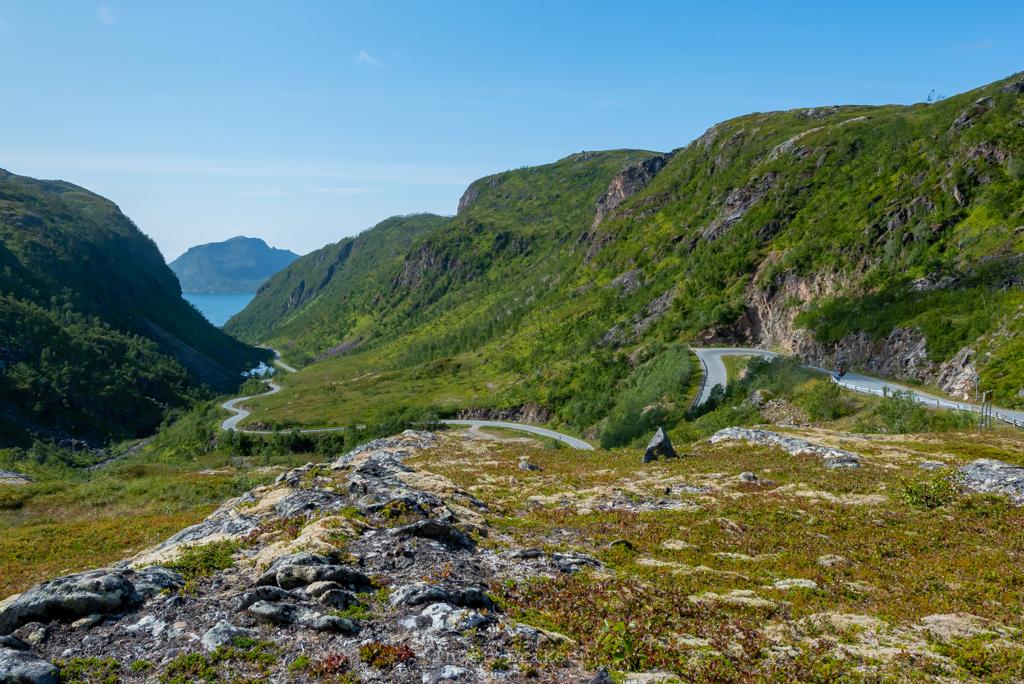 Sifjord